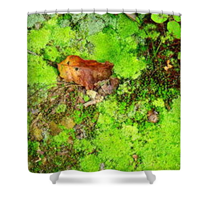 Moss Shower Curtain featuring the photograph Kate Moss by Edward Smith