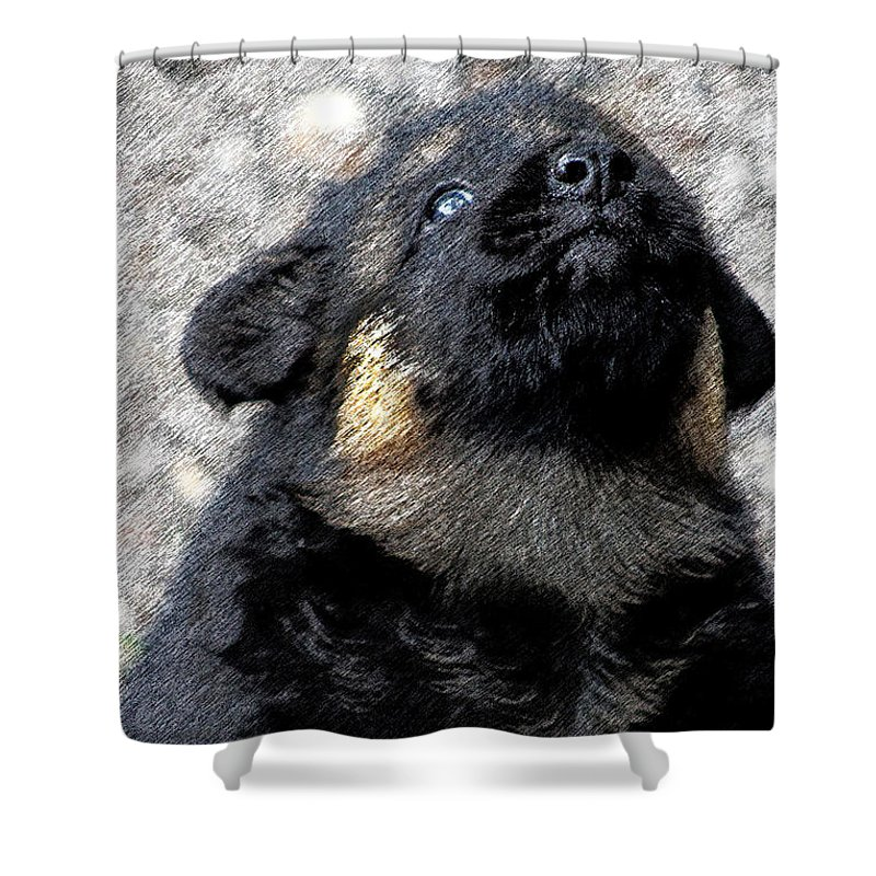 German-shepherds Shower Curtain featuring the mixed media Keep It Toward The Sky by Maria C Martinez