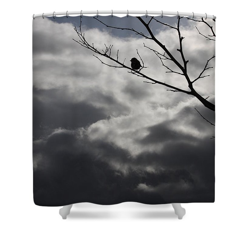 Storm Shower Curtain featuring the photograph Keeping Above The Storm by Carol Groenen