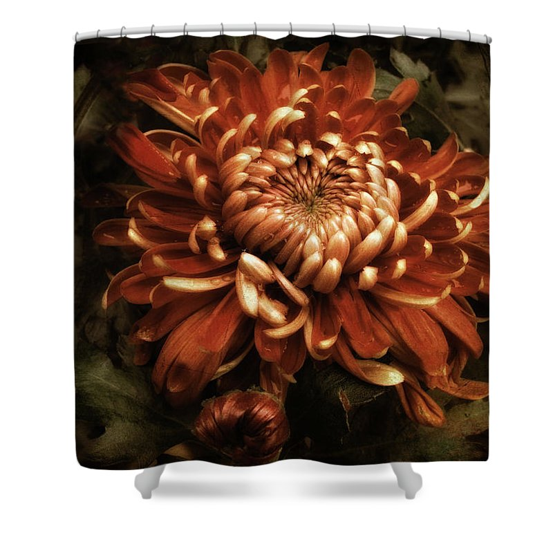 Flowers Shower Curtain featuring the photograph Keeping Mum by Jessica Jenney