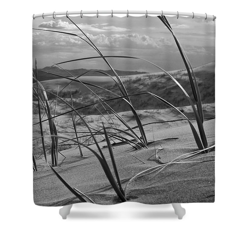 Shower Curtain featuring the photograph Kelso Dunes by Eric Rosenwald