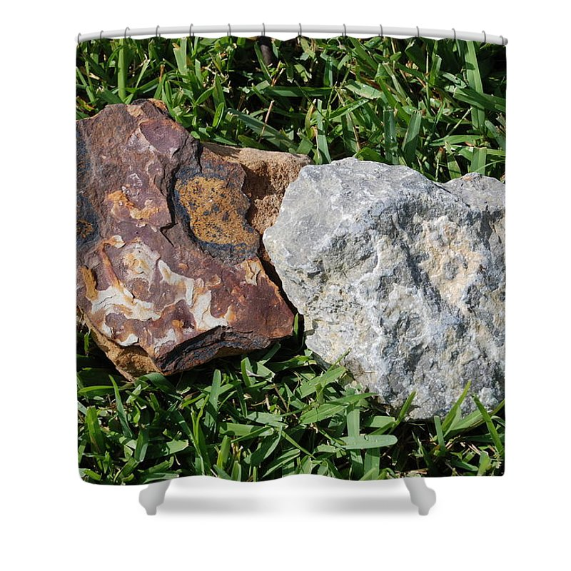 Kentucky Shower Curtain featuring the photograph Kentucky Meets New Mexico In Florida by Rob Hans