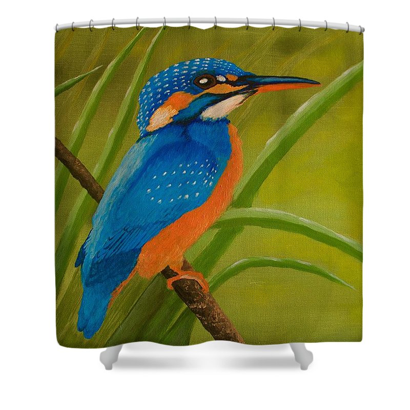 Kingfisher Shower Curtain featuring the painting Waiting For You by Zuleyha Ali