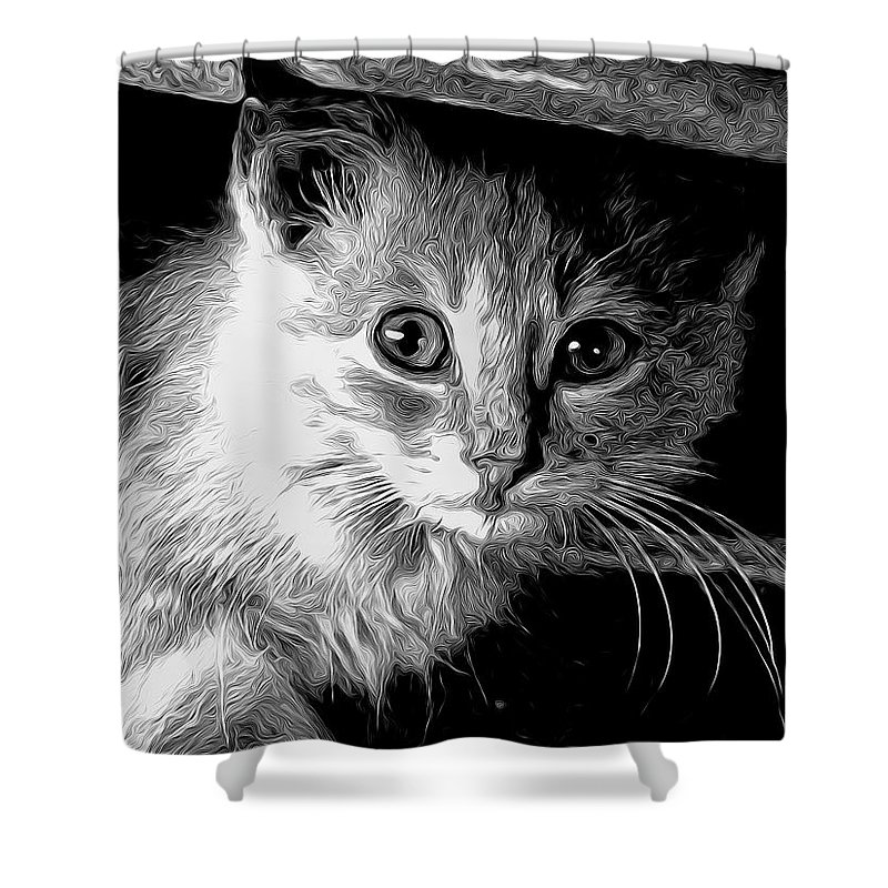 Cat Shower Curtain featuring the photograph Kitty In Black White by Shannon Story