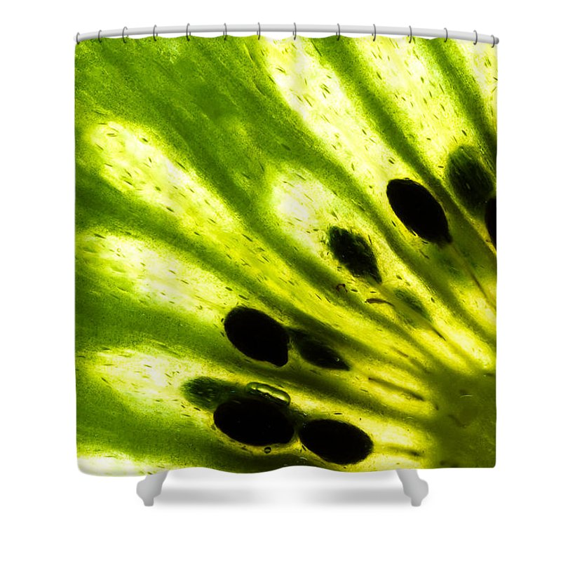 Kiwi Shower Curtains