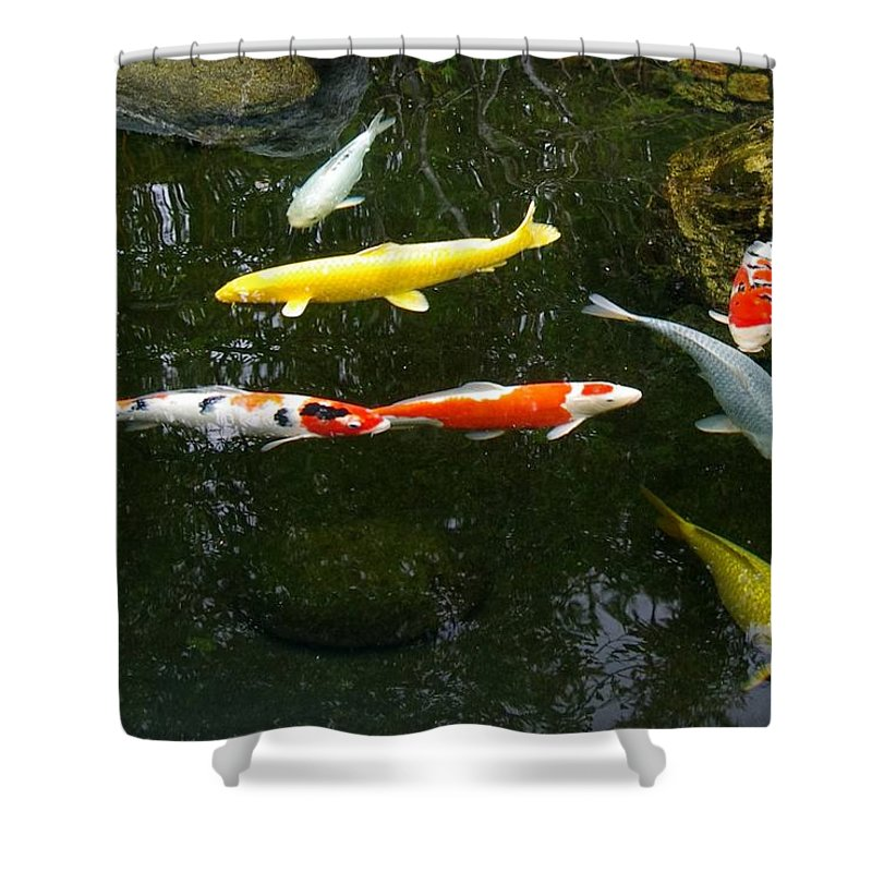 Koi Shower Curtain featuring the photograph Koi-jfg Cherry Blossom Festival 2013-4 by Phyllis Spoor