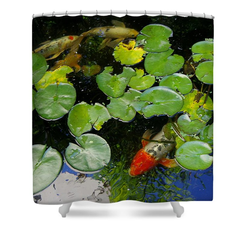 Koi Shower Curtain featuring the photograph Koi With Lily Pads D by Phyllis Spoor