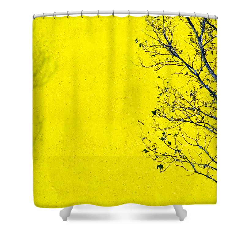 Skip Shower Curtain featuring the photograph Krishna by Skip Hunt