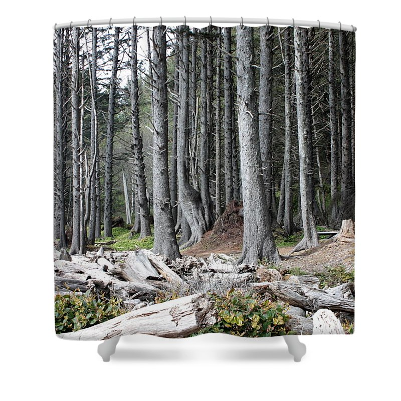 Wolf Legends Shower Curtain featuring the photograph La Push Beach Trees by Carol Groenen