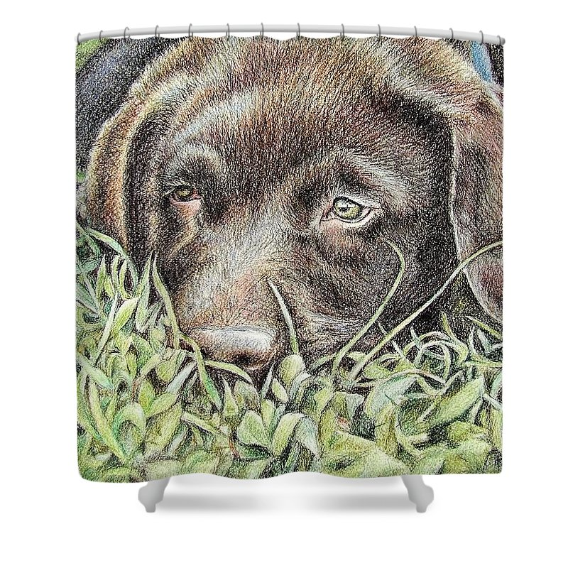 Dog Shower Curtain featuring the pastel Labrador Puppy by Nicole Zeug