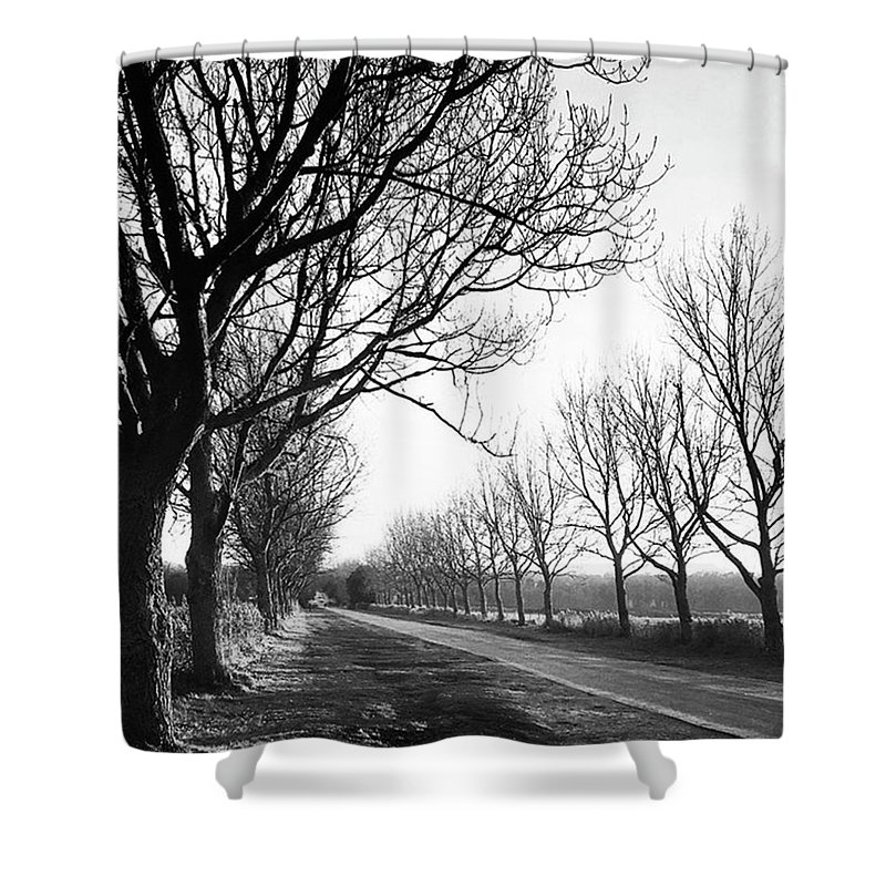 Natureonly Shower Curtain featuring the photograph Lady Anne's Drive, Holkham by John Edwards