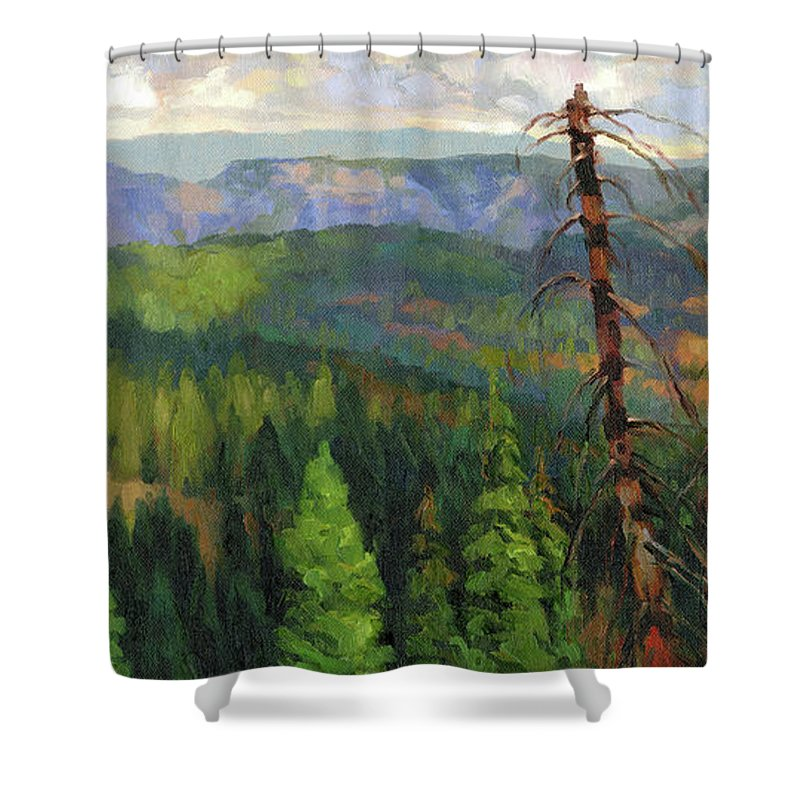 Wilderness Shower Curtain featuring the painting Ladycamp by Steve Henderson