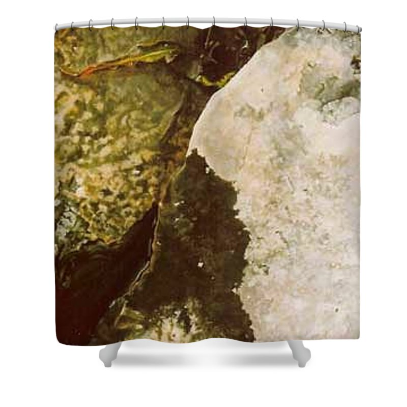 Hyperrealism Shower Curtain featuring the painting Lake Level Dropping by Michael Earney