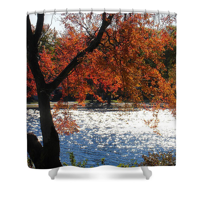 Landscape Shower Curtain featuring the photograph Lakewood by Steve Karol