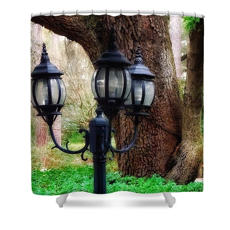 Garden Shower Curtain featuring the photograph Lamppost And Oak by Paul Wilford