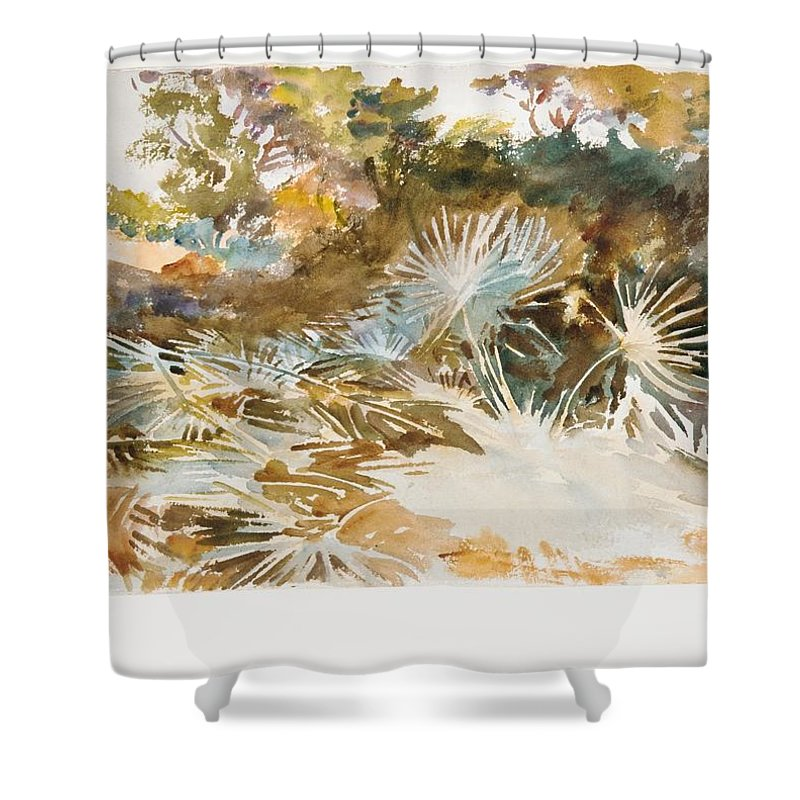Landscape With Palmettos Shower Curtain featuring the painting Landscape With Palmettos by John Singer