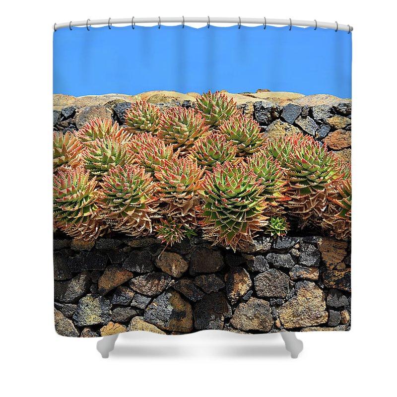 Palma Shower Curtain featuring the photograph Las Manchas De Abajo by Heinz Tschanz-Hofmann