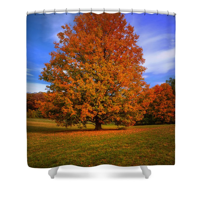 Fall Shower Curtain featuring the photograph Last Call Of Fall by John Absher