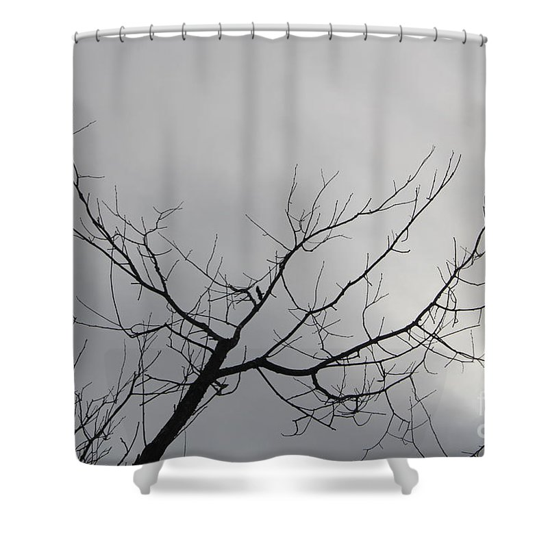Shower Curtain featuring the photograph Late Winter Clouds by Barbara Milhender