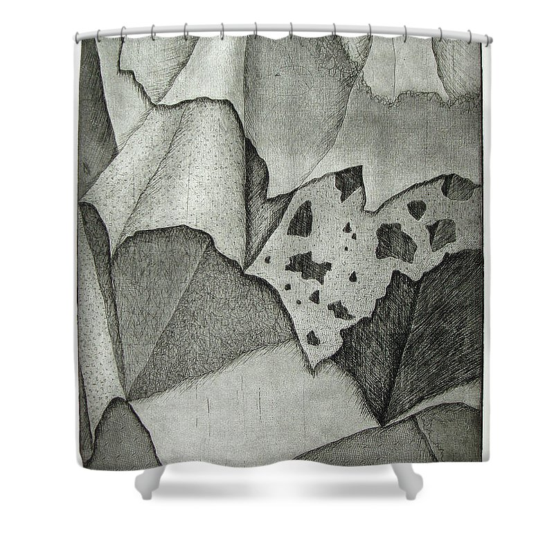 Etching Shower Curtain featuring the drawing Layers by Nancy Mueller