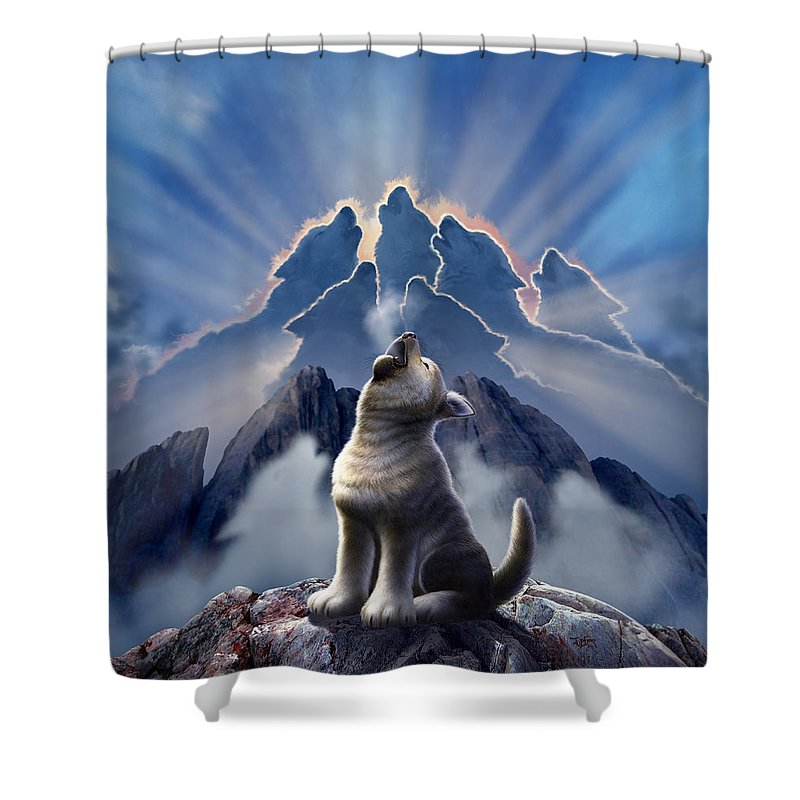 Mountain Dog Shower Curtains