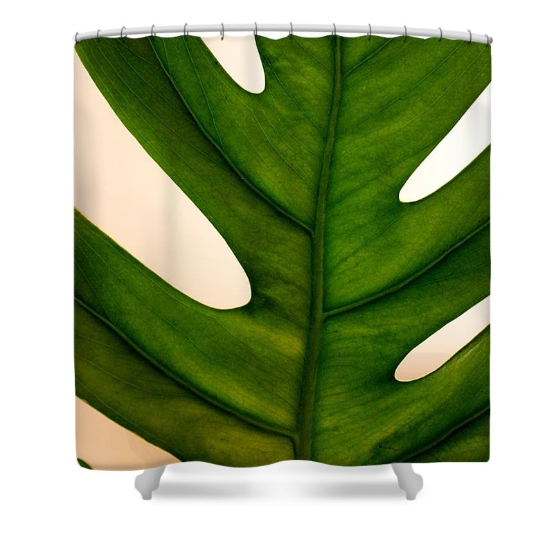 Leaf Shower Curtain featuring the photograph Leaf by Mesa Teresita