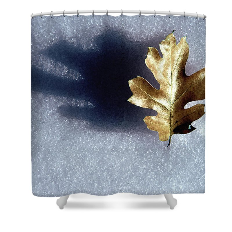 Photography Shower Curtain featuring the photograph Leaf On Snow by Paul Wear