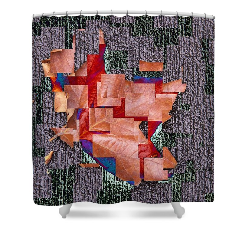 Leaf Shower Curtain featuring the photograph Leaf On Stone 2 by Tim Allen