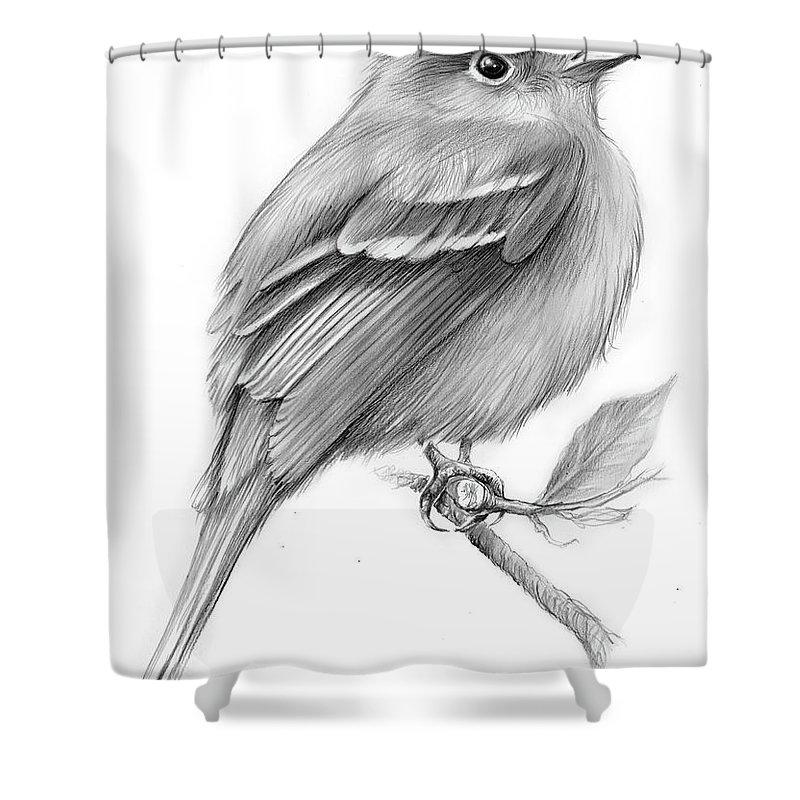 Flycatcher Shower Curtains
