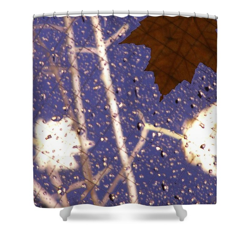 Leaves Shower Curtain featuring the photograph Leaves And Rain 2 by Tim Allen
