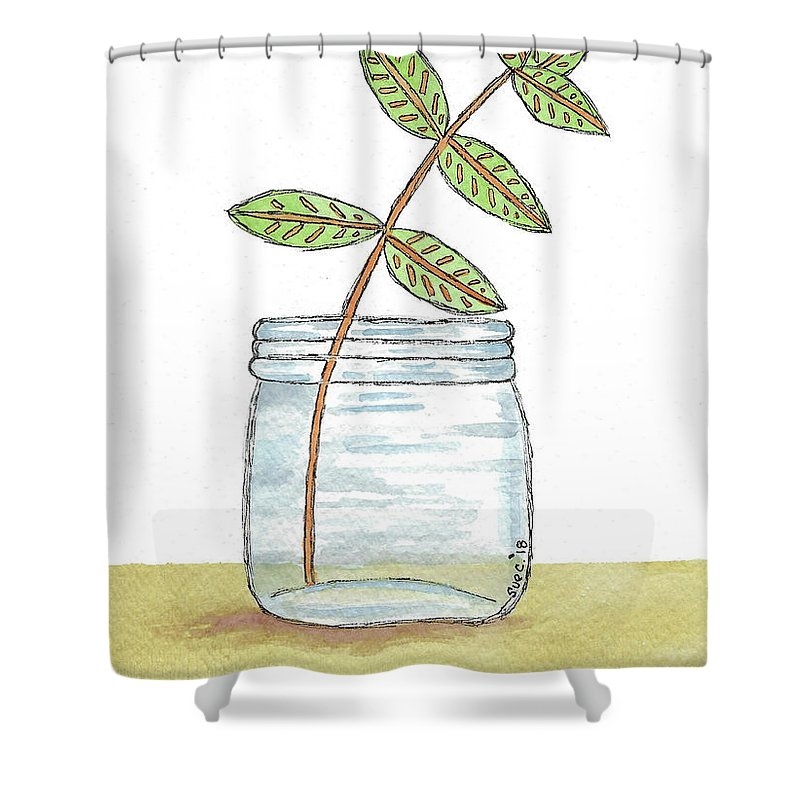 Watercolor And Ink Shower Curtain featuring the painting Leaves In A Jar by Susan Campbell