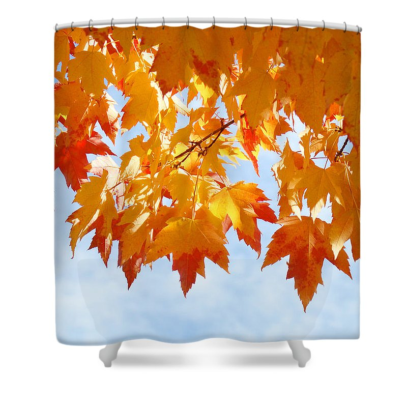 Autumn Shower Curtain featuring the photograph Leaves Nature Art Orange Autumn Tree Leaves by Baslee Troutman