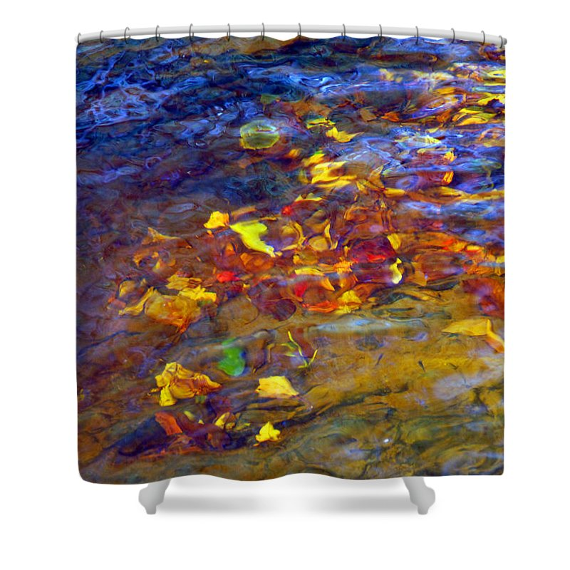 Water Shower Curtain featuring the photograph Leaves Underwater by Francesa Miller