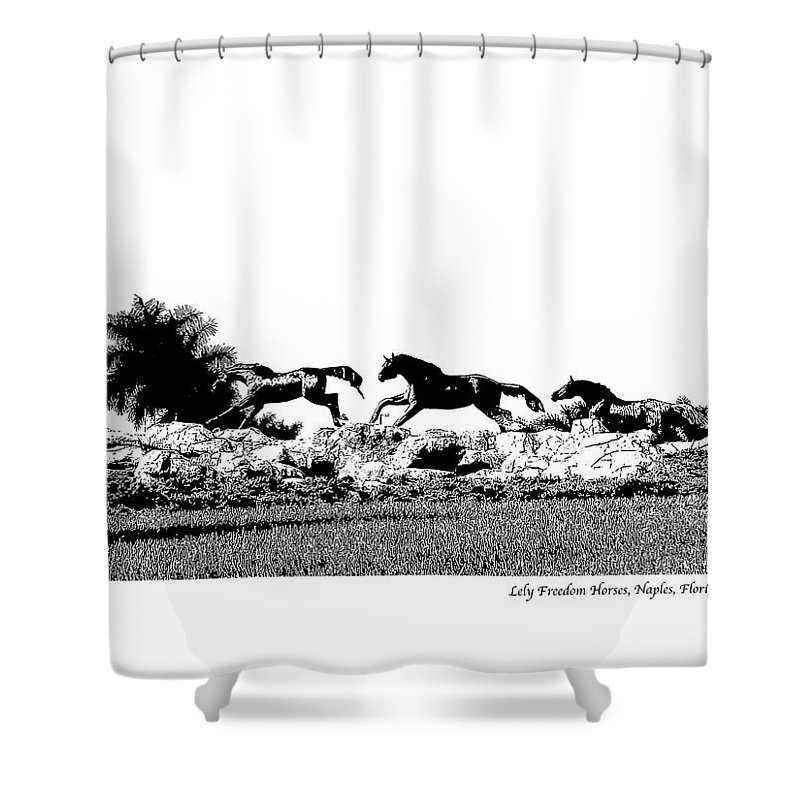 Horse Shower Curtain featuring the photograph Lely Horses by Laurie Paci