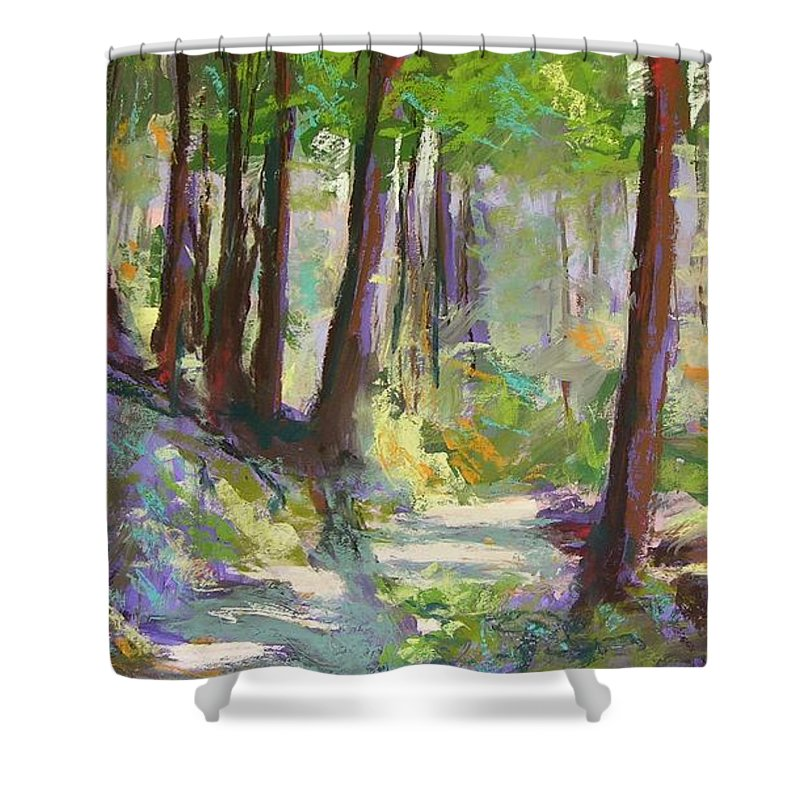 Landscape Shower Curtain featuring the painting Lena Lake Trail Shadows by Mary McInnis