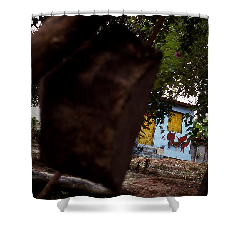 Dog Shower Curtain featuring the photograph Lencois - Dog by Patrick Klauss