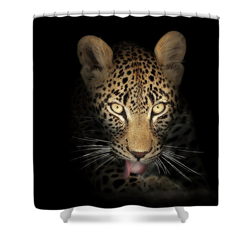 Leopard Shower Curtain featuring the photograph Leopard In The Dark by Johan Swanepoel