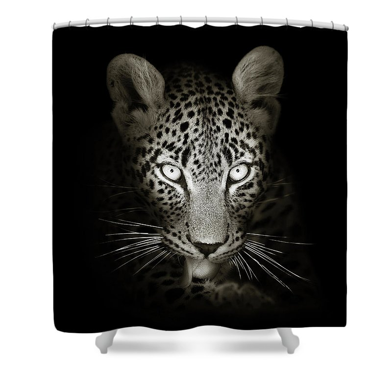 Leopard Shower Curtain featuring the photograph Leopard portrait in the dark by Johan Swanepoel