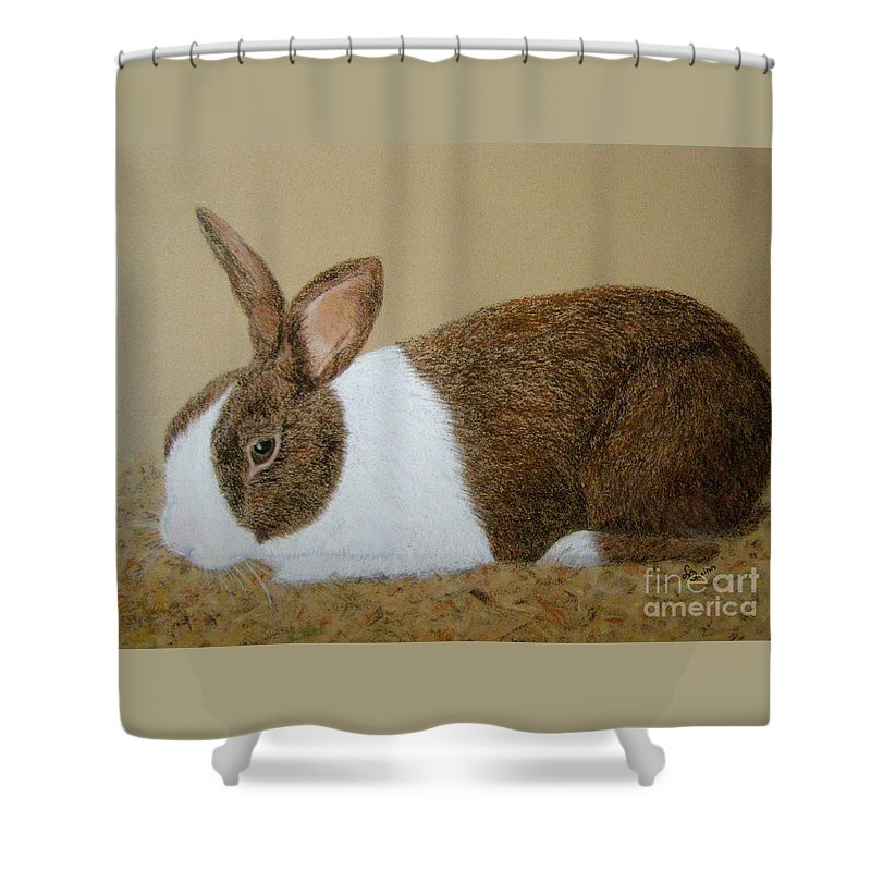 Bunny Shower Curtain featuring the painting Les's Rabbit by Lynn Quinn
