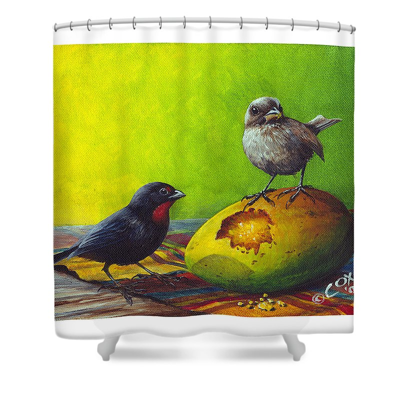 Chris Cox Shower Curtain featuring the painting Lesser Antillean Bullfinches and mango by Christopher Cox