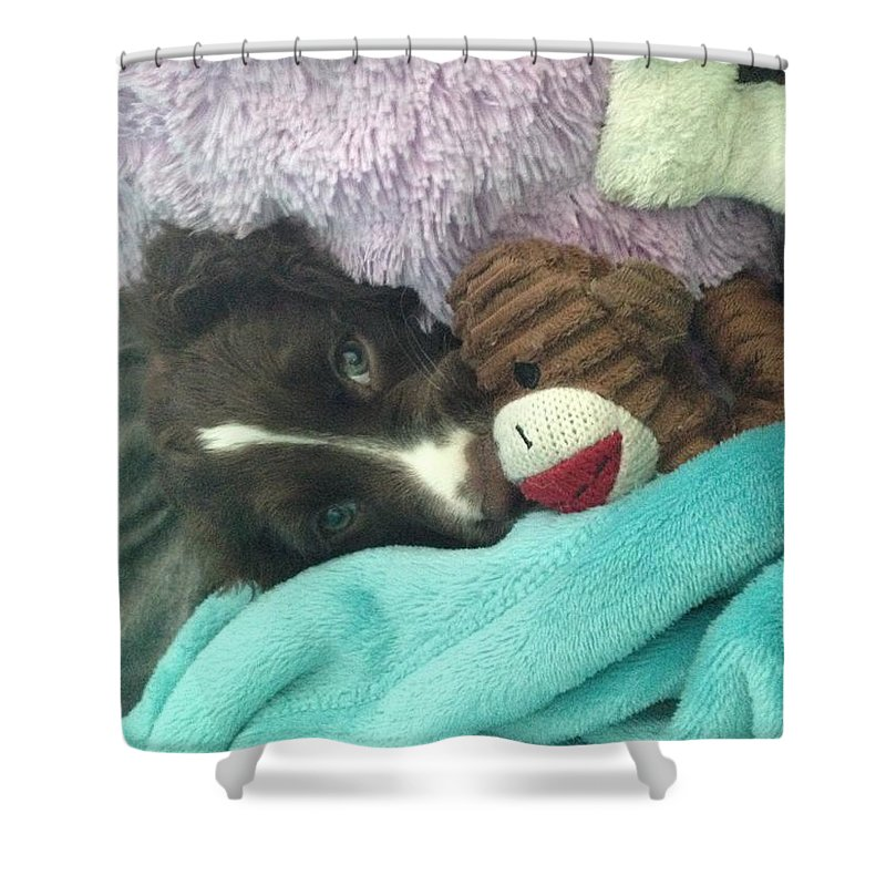 Shower Curtain featuring the photograph Let Me Sleep by Avery McCullough