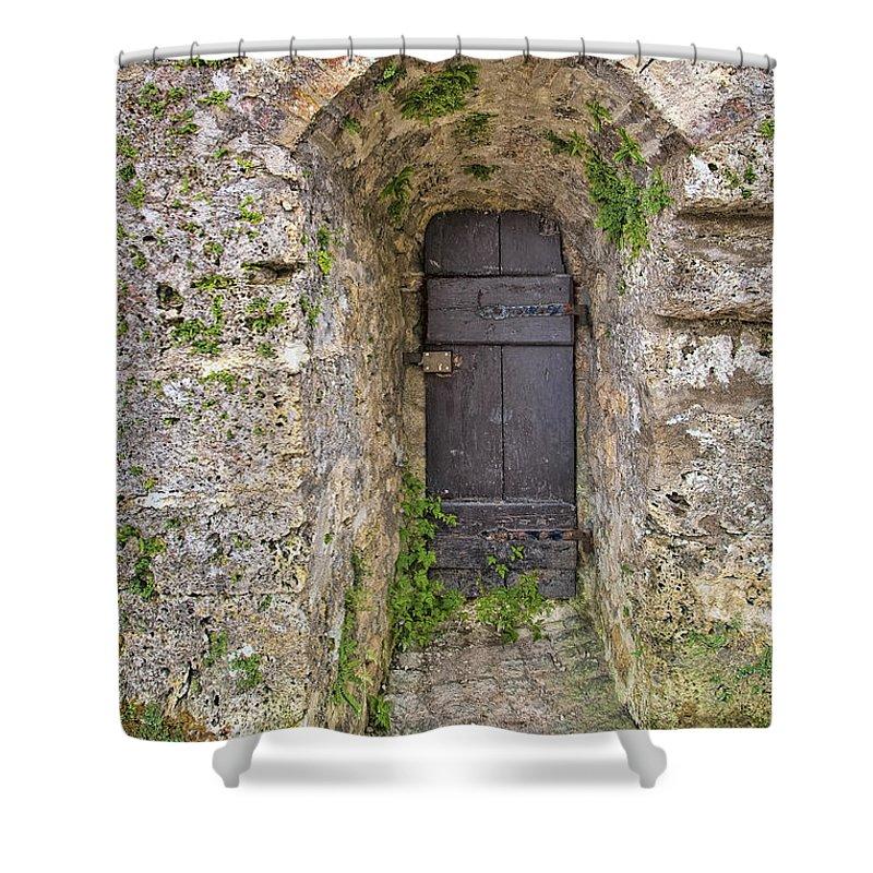 Architecture Shower Curtain featuring the photograph Lichtenstein Castle Door by Marcia Colelli