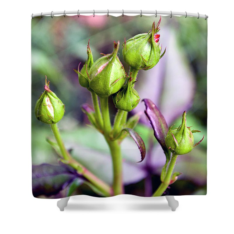 Colorful Shower Curtain featuring the photograph Life Is Abound by Jeremy Hill