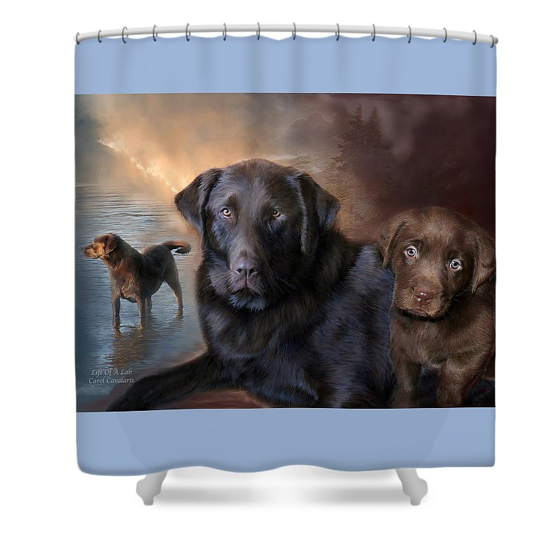 Labrador Retriever Shower Curtain featuring the mixed media Life Of A Lab by Carol Cavalaris