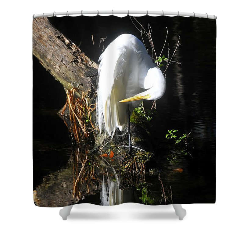 Great Egret Shower Curtain featuring the photograph Life On The River by David Lee Thompson