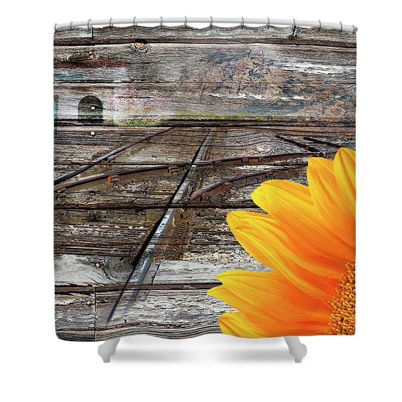 Choice Shower Curtain featuring the photograph Life by Phyllis Denton