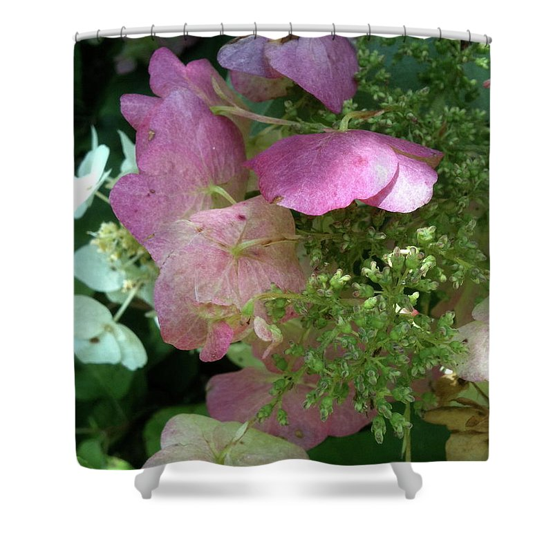 Bandon Beach Shower Curtain featuring the photograph Light Pink by Trish Hale