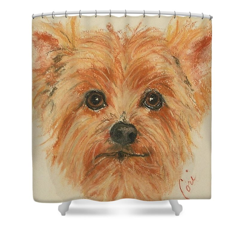 Pastel Shower Curtain featuring the drawing Lil Rascal by Cori Solomon