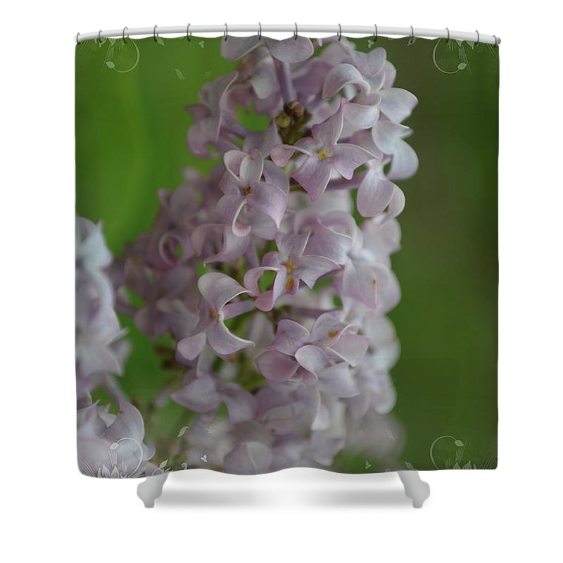 Nature Shower Curtain featuring the photograph Lilac Dreams With Corner Decorations by Debbie Portwood