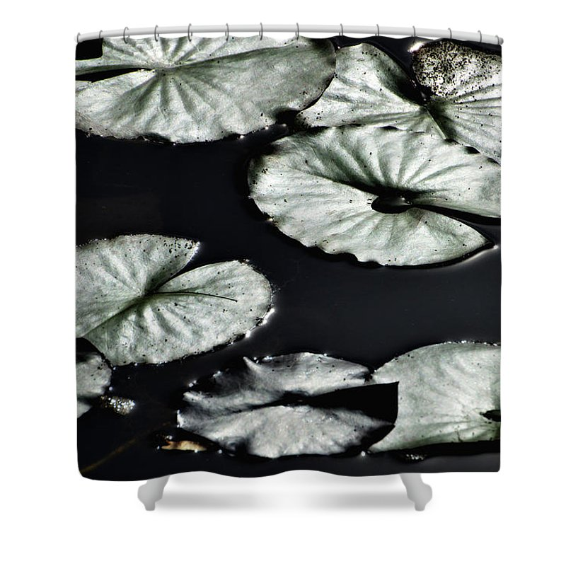Lily Shower Curtain featuring the photograph Lilies Of The Deep by Donna Blackhall